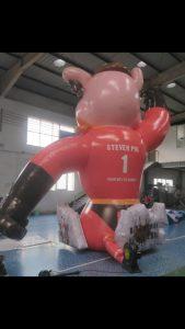 Steven Pig! Samen met u ontwerpt WE-inflate de mooiste opblaasbare items.